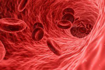 Kalkulačka dědičnosti krevní skupiny pro dítě