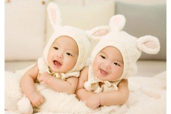 Narození dvojčat připadá přibližně v počtu jednou na 80 porodů, tedy pravděpodobnost narození dvojčat je asi 1,25%.